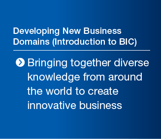 Developing New Business Domains (Introduction to BIC) Bringing together diverse knowledge from around the world to create innovative business