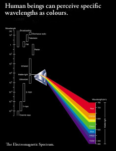 Human beings can perceive specific wavelengths as colours.