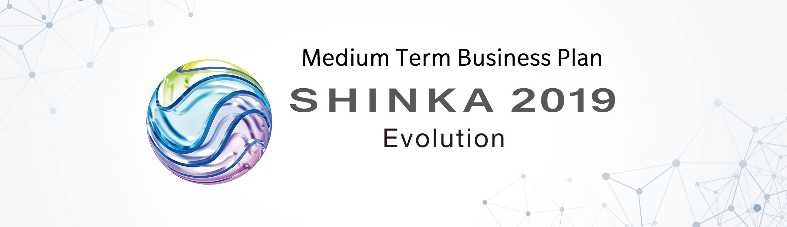 Medium Term Business Plan SHINKA 2019