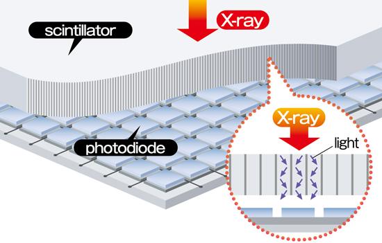 Flexdr C30 Digital Radiography Konica Minolta