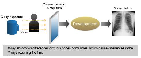 Radiology L08 - Image Characteristics - Google Docs